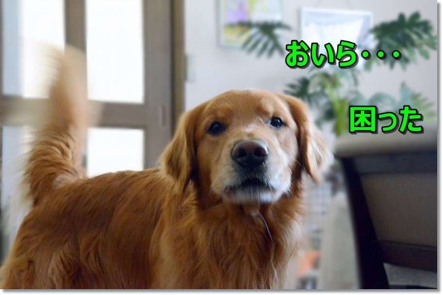 DSC_3443むむ~