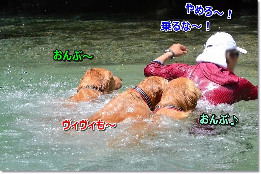 DSC_5352乗るな~!