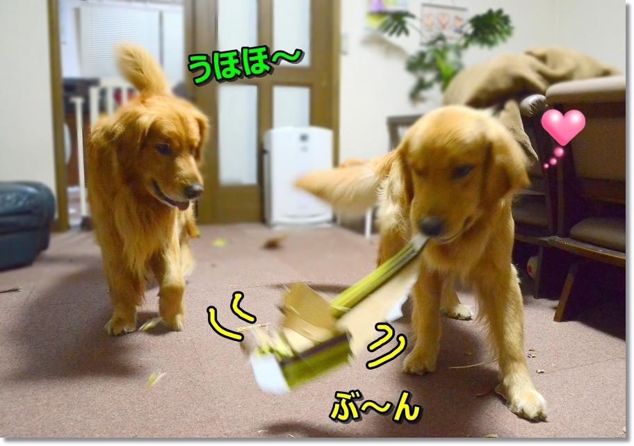 DSC_5920うほほ~