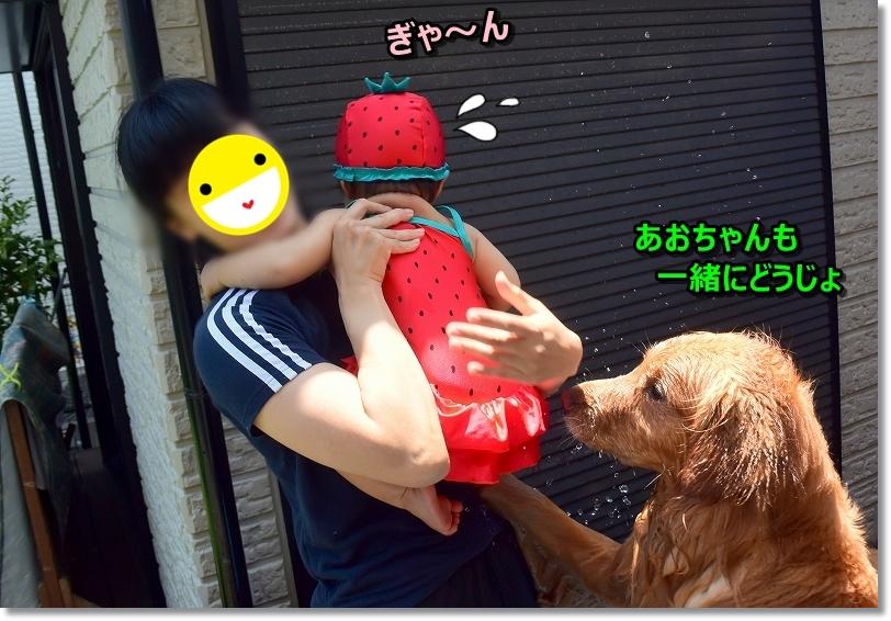 DSC_8359入ろうじぇ ぎゃー!