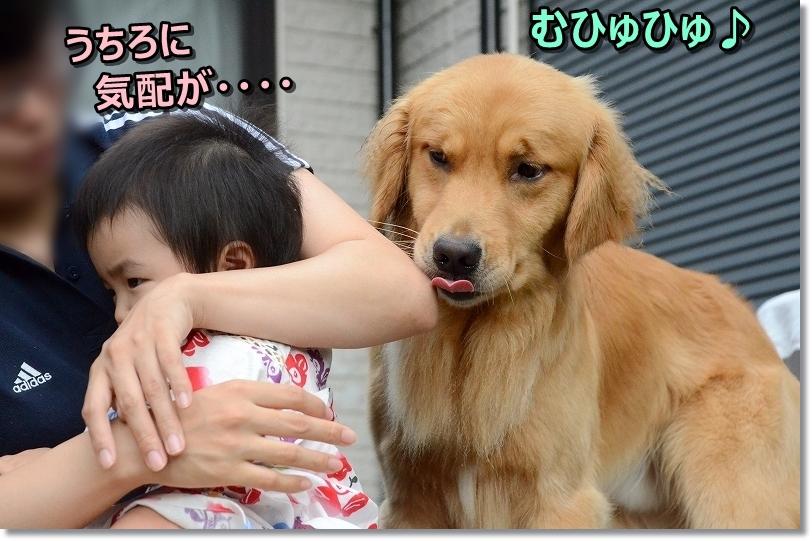 DSC_6909ふ~ん