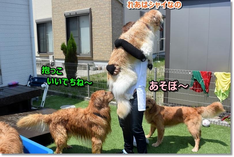 DSC_8518遊ぼうじぇ
