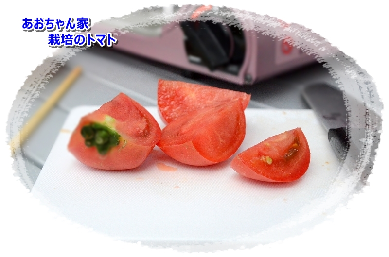 DSC_7529あおちゃん家からのトマトも