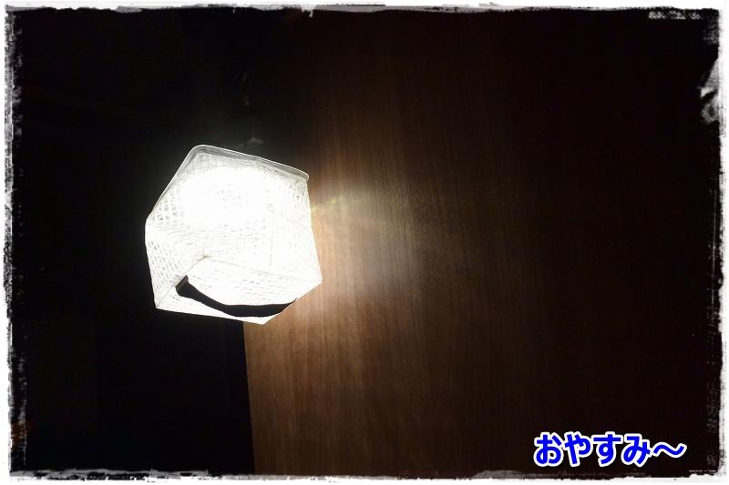DSC_8597おやすみ~