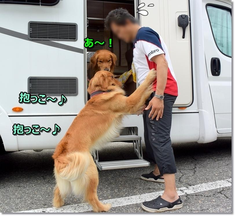DSC_8648抱っこ~