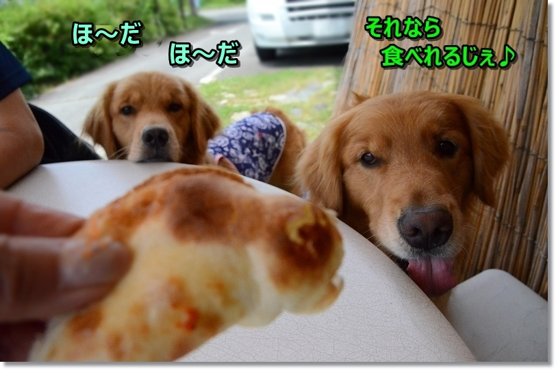 DSC_7852あ~