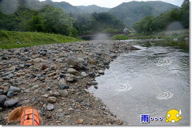 DSC_6655雨