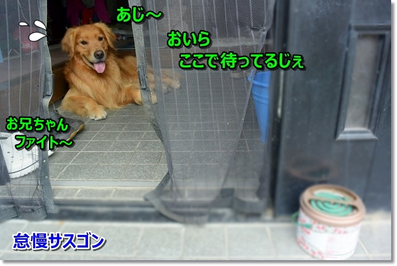 DSC_8859え~?