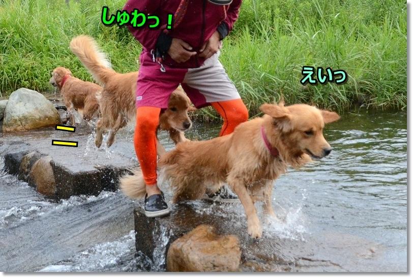 DSC_9236しゅわっ