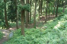 増山城11