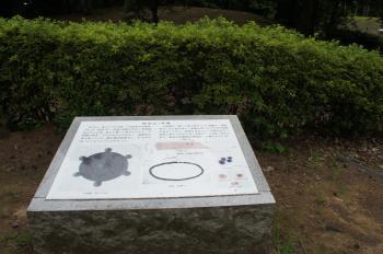和田山07