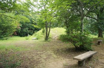 和田山16