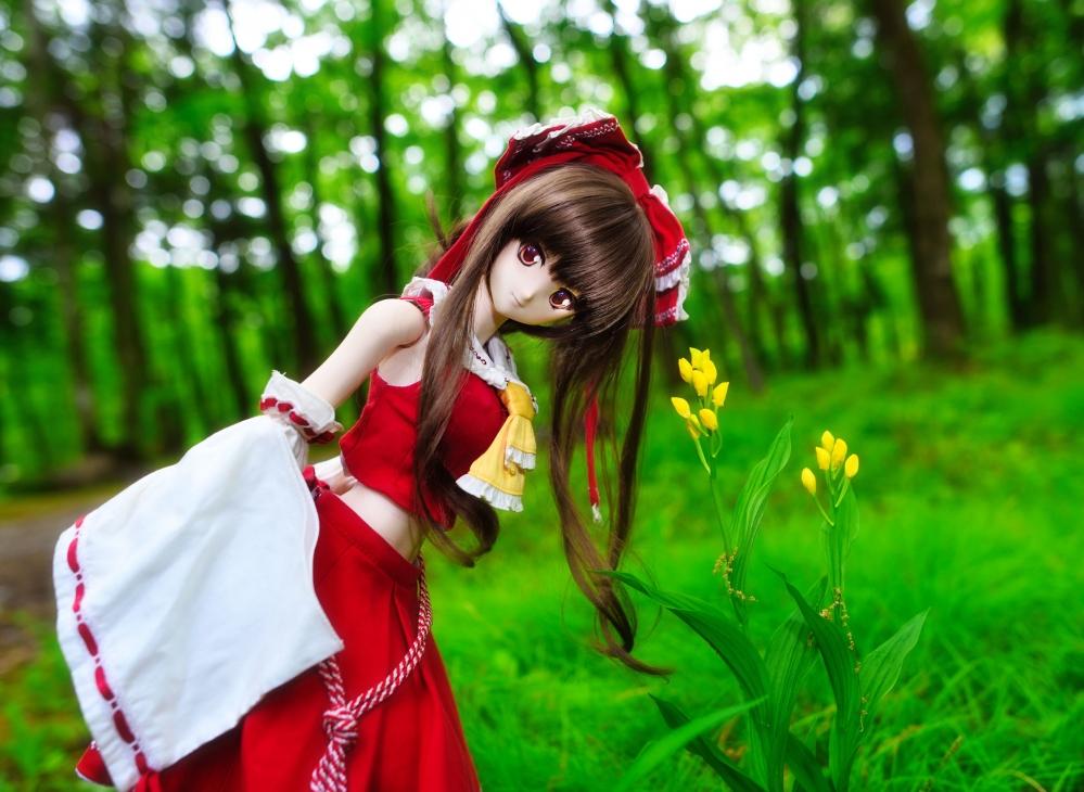 DSC_0304aa.jpg