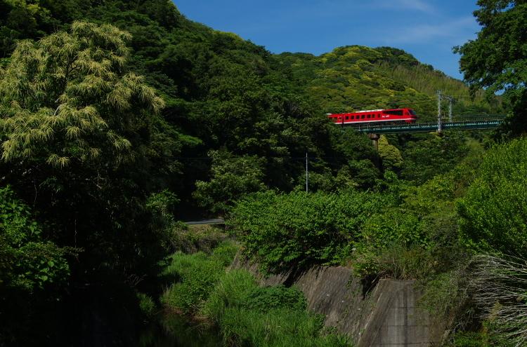 2017年06月03日 東海道 伊豆_011(2)