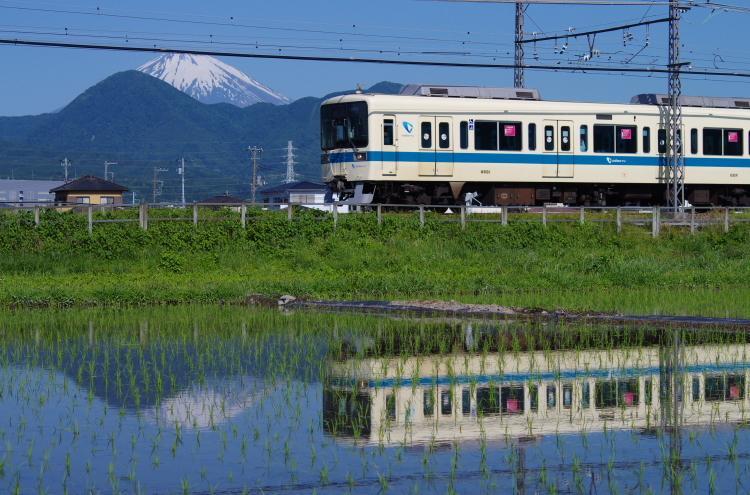 2017年06月03日 東海道 伊豆_039