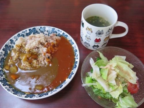 カレー、スープ、サラダ
