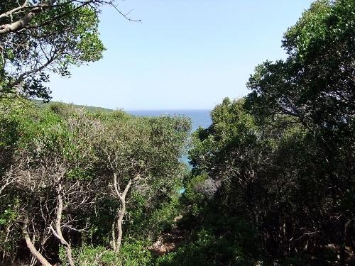 メトーニ_サピエンツァ島 (4)