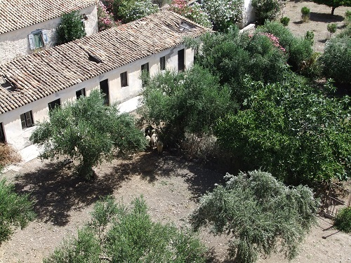 コローニ_ティミオス・プロドロモス修道院 (8)