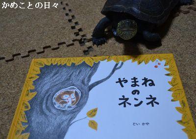 DSC_0651-y.jpg