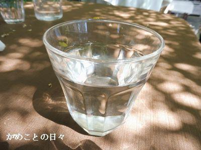 P1000195-w.jpg