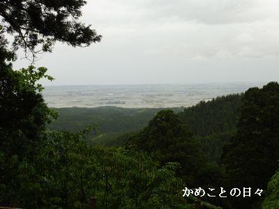 P1020368-s.jpg