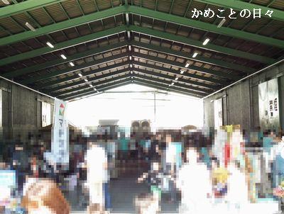 P1020397-s.jpg