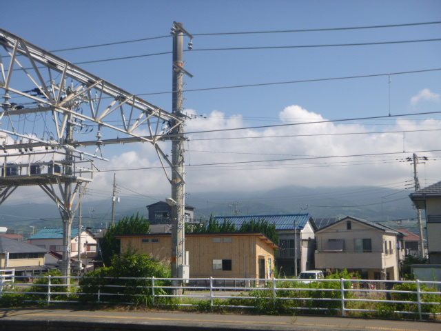 P1050479.jpg