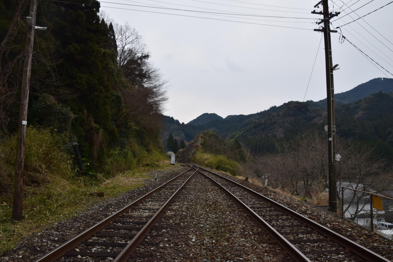 Daigyoji11.jpg
