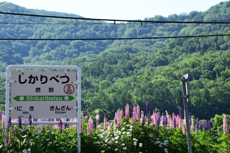 Shikaribetsu24.jpg