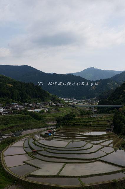 和歌山・有田川町 あらぎ島の棚田5