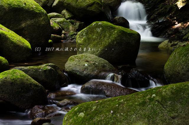涼を求めて! 三重・白藤滝4