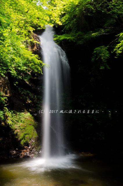 涼を求めて! 三重・白藤滝1