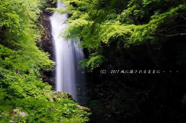 涼を求めて! 三重・白藤滝3