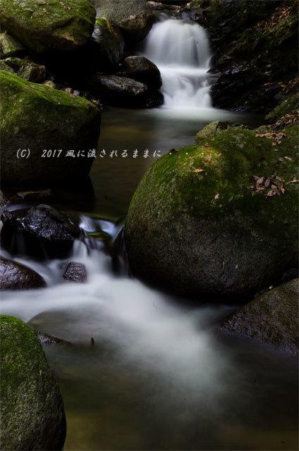 涼を求めて! 三重・白藤滝8