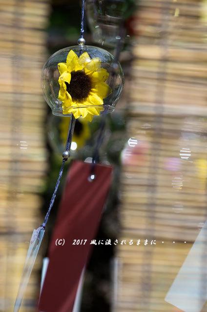 京都・正寿院(しょうじゅいん) 風鈴まつり4