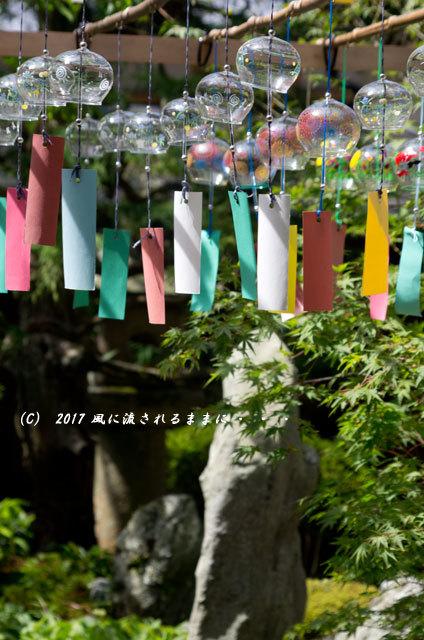 京都・正寿院(しょうじゅいん) 風鈴まつり7