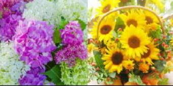 3911-340花かご