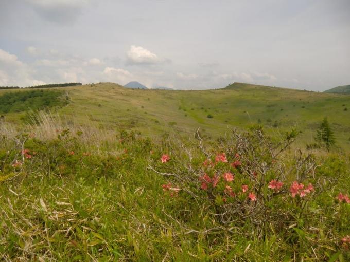 歩いてきた稜線と間に蓼科山