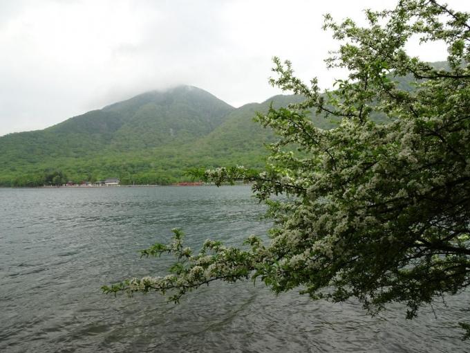 ズミと黒檜山