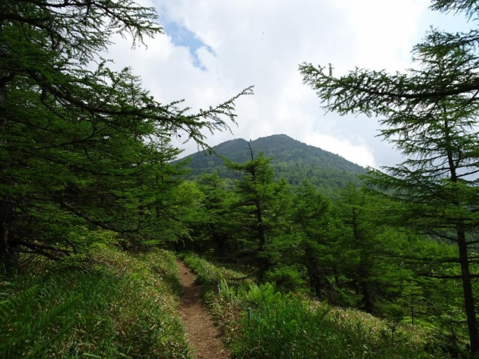 東篭ノ登山へ