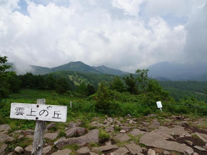 雲上の丘から