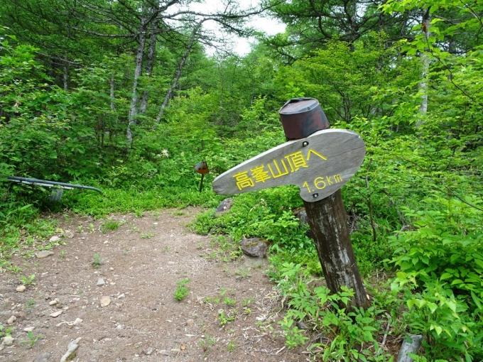 高峰山まで1.6キロ
