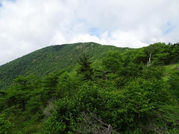 見晴らし台から高峰山