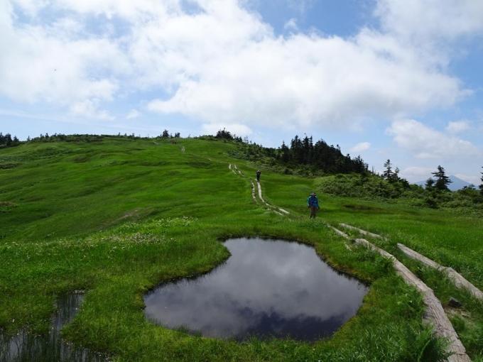 ハート型の池塘と