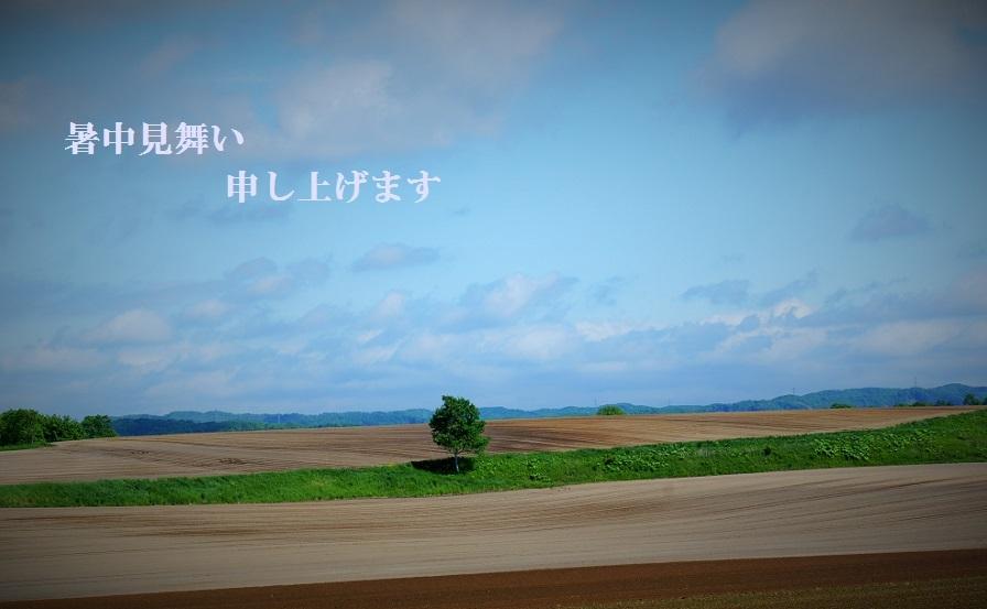 DSC03695a.jpg