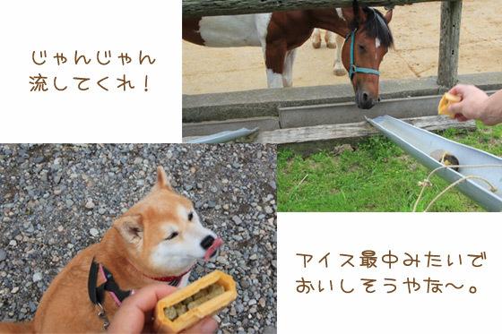 minamigaoka4.jpg