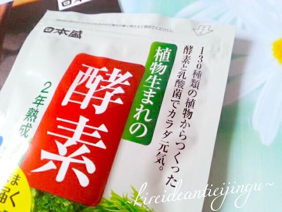 shokubutskoso-008.jpg