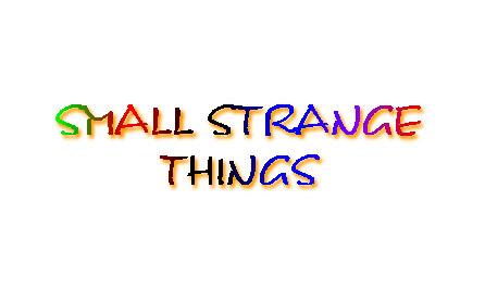 161_SMALL STRANGE THINGS