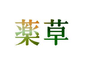 165_薬草