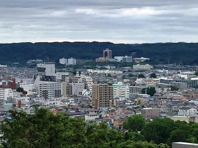 天覧山からは駿河台大学が良く見える